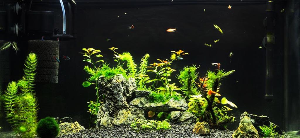 филтри за аквариум
